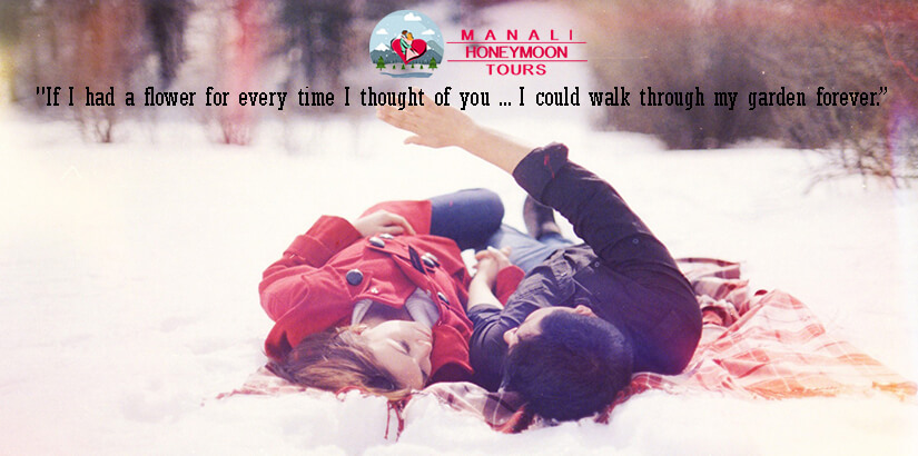 Honeymoon Tour Package for Manali and Shimla