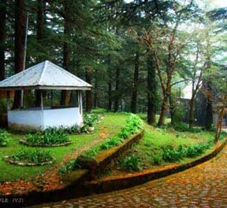 Kullu Manali Honeymoon Package By Car