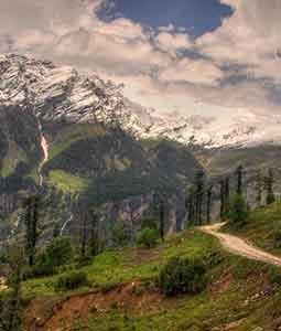Manali Shimla Honeymoon Package by Volvo