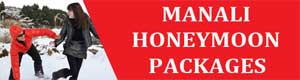 Kullu Manali Honey moon Packages