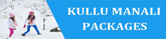 Kulu Manali Honeymoon Package