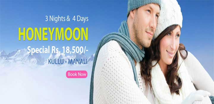 honeymoon special manali tours