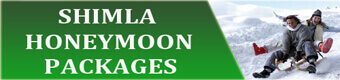 Kullu Manali Honey moon Package